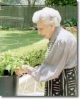 elderly_wf_garden
